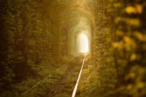 Tunnel de l'amour : du romantisme à l'état brut