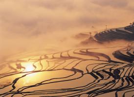 Yuanyang : les rizières arc-en-ciel