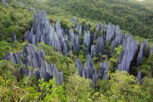 Parc National de Gunung Mulu : la nature qui vous fait perdre la tête !