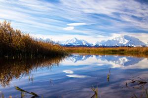 Le Mont McKinley : le toit blanc de l'Amérique du Nord
