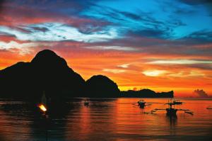 L'île de Miniloc : le paradis des animaux marins