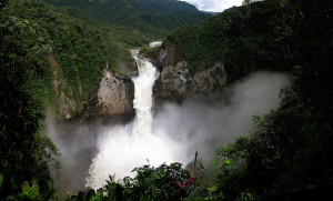 Forêt amazonienne : la condition de l'équilibre du monde