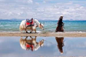 Namtso : le lac céleste du Tibet