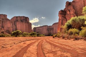 Parc de Talampaya : la nature à l'état brut