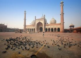 Jama Masjid : la plus grande mosquée de l'Inde