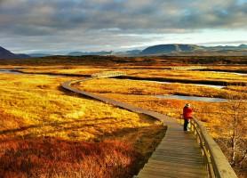 Parc national de Þingvellir : entre le charme et le passé de l'Islande !