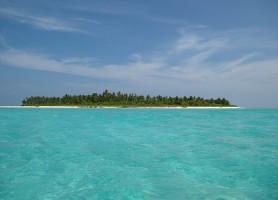 Îles Lakshadweep: une vie de génies sous l'eau
