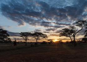 Parc national de Tarangire: au cœur de splendides paysages