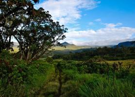 Parc national du mont Kenya: toucher le ciel africain