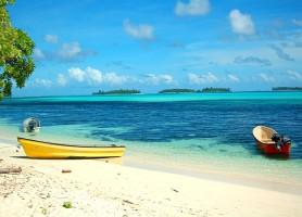 Vanuatu : au cœur d'un singulier paysage