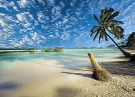 Praia dos Carneiros : le brillant autel marin