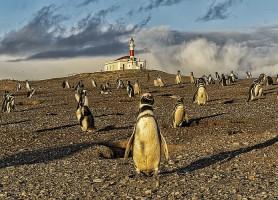 Punta Arenas : la ville portuaire chilienne