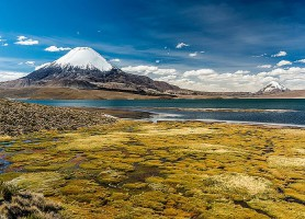 Parc national de Sajama : le naturel joyau de la Bolivie