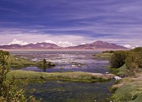 Salar de Tara : découvrir un désert magique