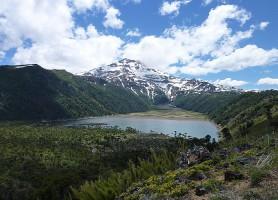 Parc national Tolhuaca : voyage au cœur d'une nature singulière