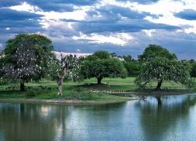 Chaco : un véritable habitat pour la diversité