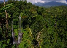 Chutes de Sekumpul: les cascades septuplées!