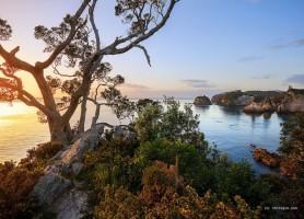 Coromandel: la destination la plus prisée de Nouvelle-Zélande!