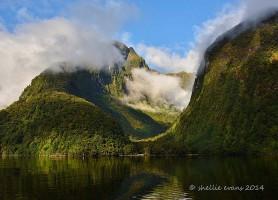 Doubtful Sound: le plus grand fjord de la Nouvelle-Zélande