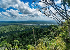 Forêt Iwokrama: découvrez une biodiversité éblouissante