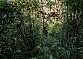 Gibbon Experience: les plus belles maisons dans les arbres!