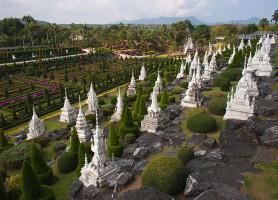 Jardins tropicaux de Nong Nooch: merveille de la nature en Thaïlande