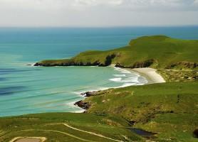 Péninsule d'Otago: une presqu'île aux traits irrésistibles
