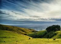 Péninsule d'Otago