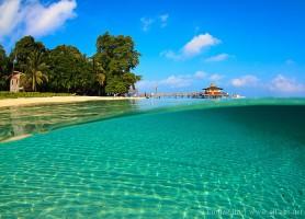 Sipadan: découvrez une île océanique paradisiaque