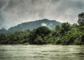 Taman Negara: au cœur de la jungle tropicale malaisienne