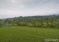 Village Mayong