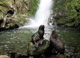Ohau waterfall: découvrez une cascade secrète