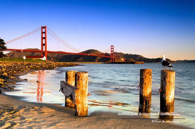 Pont de San Francisco pendant un job saisonnier
