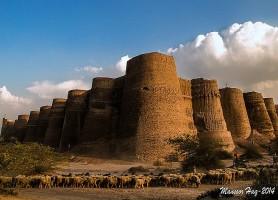Désert du Cholistan: l'habitat des grandes sensations