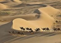 Dunes de Khongor