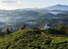Nuwara Eliya: la belle ville aux allures de terre promise!