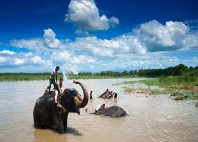 Parc national Chitwan