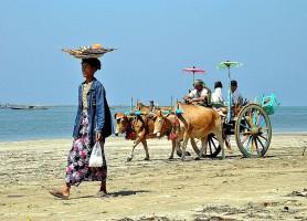 Plage de ChaungTha: un petit coin de paradis!