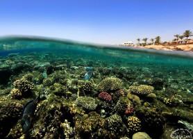 Charm el-Cheikh: la perle touristique égyptienne