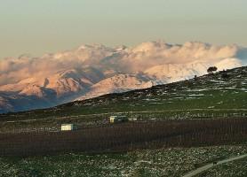 Plateau du Golan: une des régions les plus attractives d'Israël