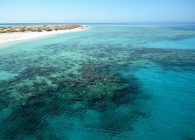 Sharm El Lulli: une escale au panthéon marin