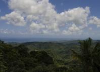 Forêt nationale d'El Yunque