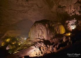 Grottes de Rio Camuy: le majestueux paradis souterrain
