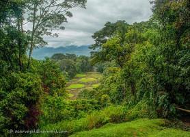 Guayabo: de captivants vestiges préhistoriques
