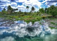 Marais de Zapata