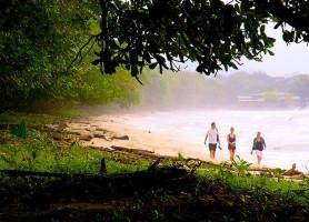Parc national Cahuita : paradis entre plage et jungle