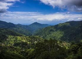 Parc national des Blue Mountains: un merveilleux enclos