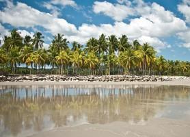Playa Samara : découvrez cette plage exceptionnelle