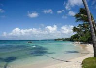 Île Bacardi