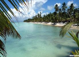 Île Saona: pour aller jusqu'au bout des rêves!